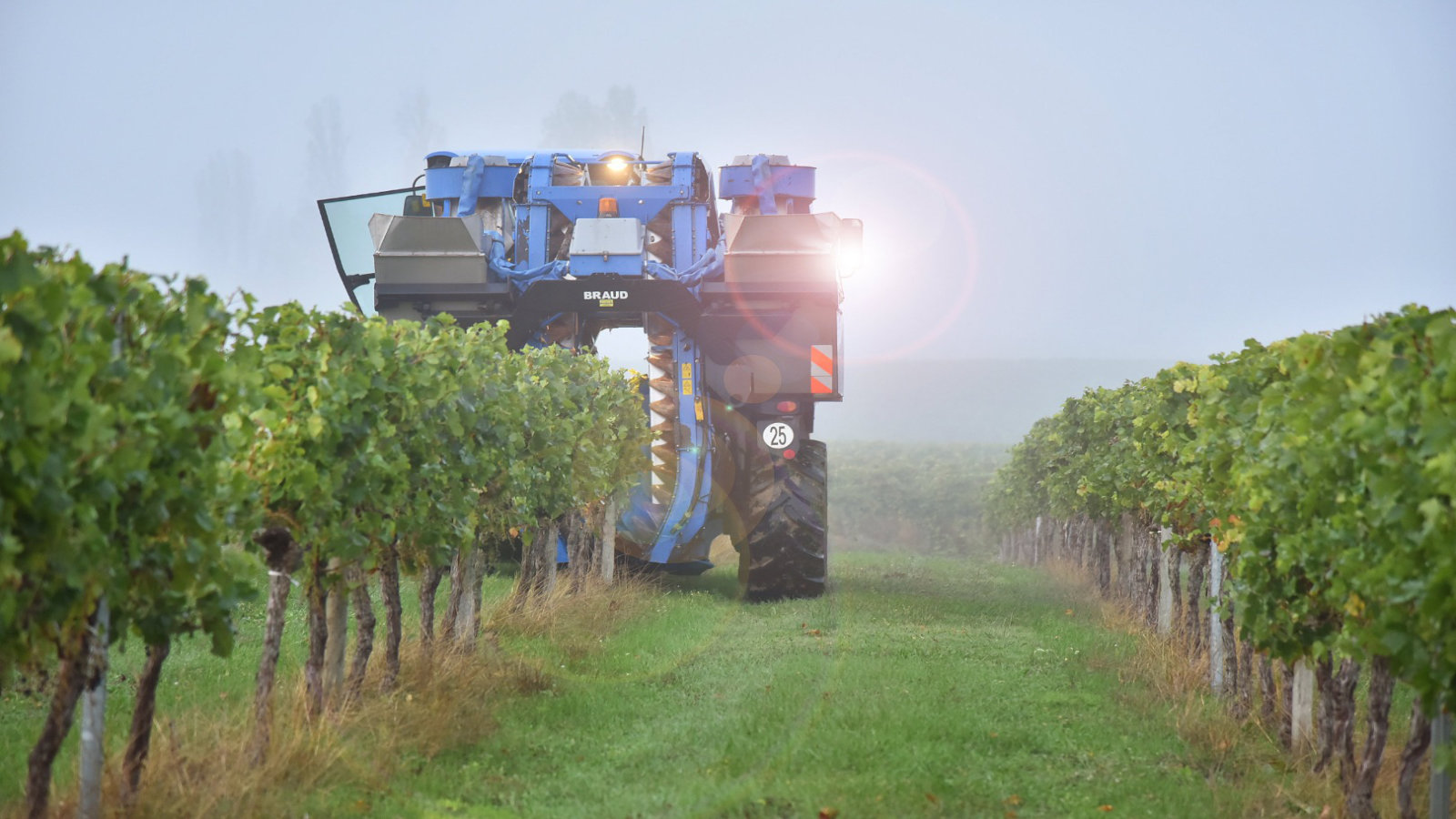Entretien des Vignobles Nadau
